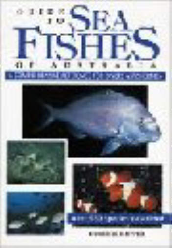 Books on australian fishes fish books books on australian fishes books on australian fishes fish books books on australian fishes australasian fishes sciox Gallery