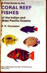 Indian ocean fishfishes maldives zanzibar fish diving books a field guide to the coral reef fishes of the indian and west pacific oceans sciox Gallery