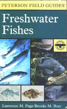 Book on north american fishesshes of north america a field guide to the freshwater fishes of the united states sciox Gallery